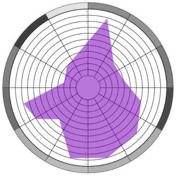 Roda da Vida - Planejamento Pessoal (Modelo)